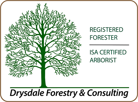 Drysdale Forestry and Consulting